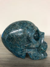 Load image into Gallery viewer, Blue Apatite Skull