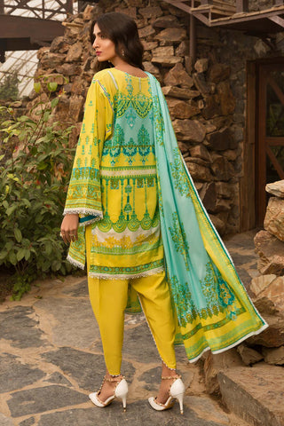 Warda Designer Collection - 2PC Lawn Embroidery- Dupatta 2520128
