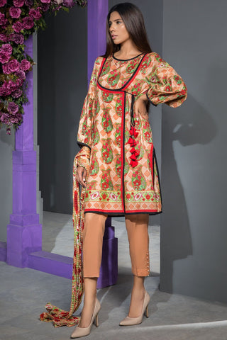 Warda Designer Collection - 2PC Lawn Print 2558208