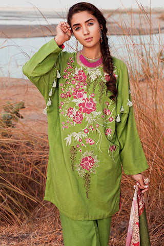 Warda Designer Collection - 3PC Woolen Silk Embroidery with Printed Shawl 3818977