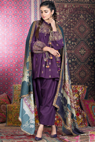 Warda Designer Collection - 3PC Khaddar Solid Chikan Kari with Shawl 3818848