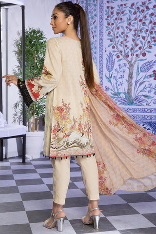 Warda Designer Collection - 3PC Brosha Chiffon Embroidery 389270A