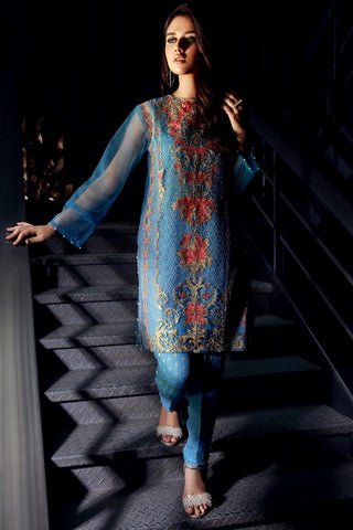 Warda Designer Collection - Stitched Net Embroided Shirt LPSS777