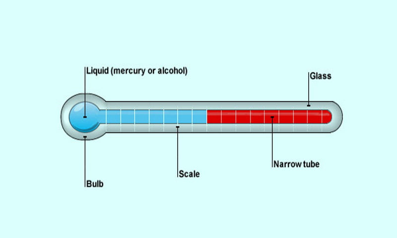 How Mercury Thermometer Works