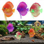 Glowing Fluorescent Floating Plastic Fish Aquarium Decoration (Gold, Purple, Light Green), 4""