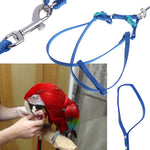 Fiber Harness With Leash For Small And Large Birds (Blue, Red), S, L
