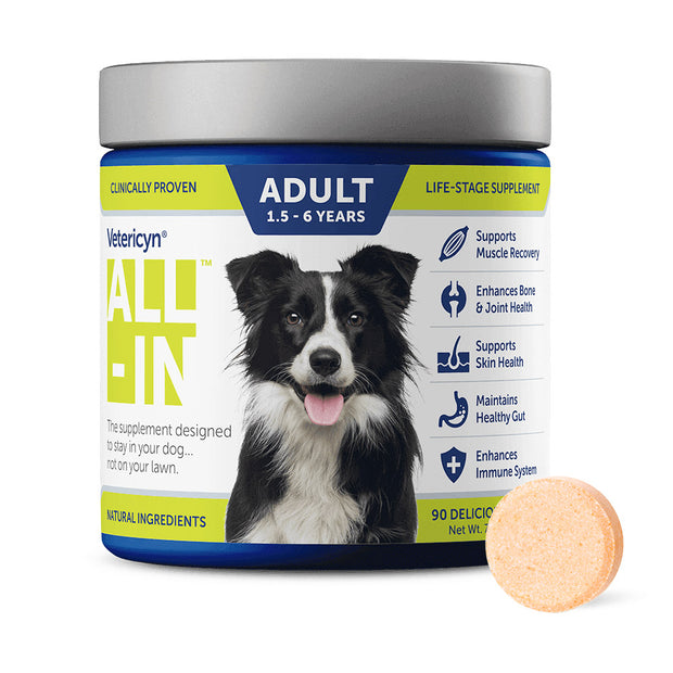 Vetericyn ALL-IN Dog Supplement – Adult