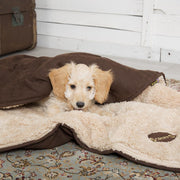 Scruffs Snuggle Dog Blanket - Chocolate