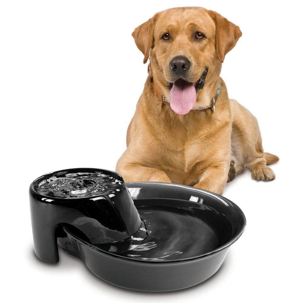 Big Max Durable Ceramic Drinking Fountain (128oz / 3.8L) -