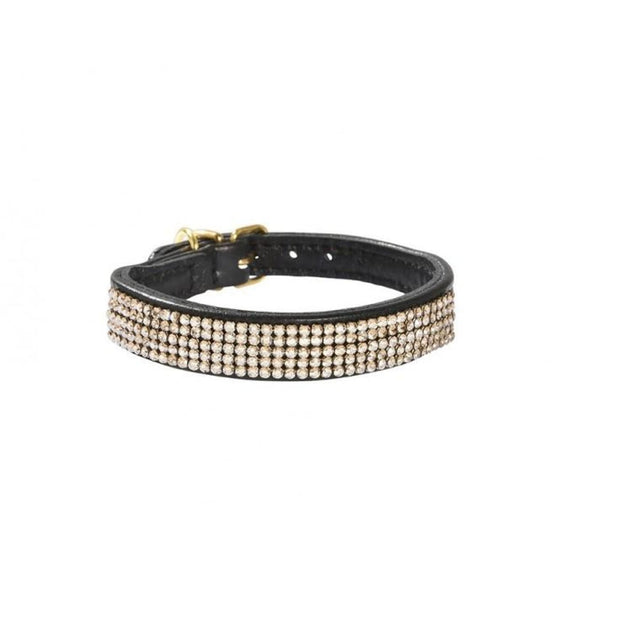 Bobby Crystal Dog Collar - Black - Collars & Fashion