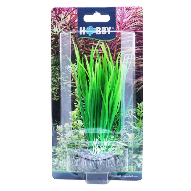 Hobby Artificial plant - Cyperus - Aquarium Decor & Layout