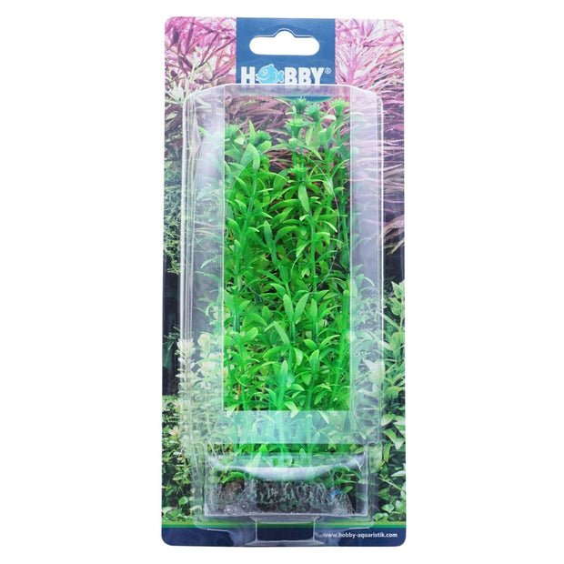 Hobby Artificial Plant - Lagarosiphon - Aquarium Decor &