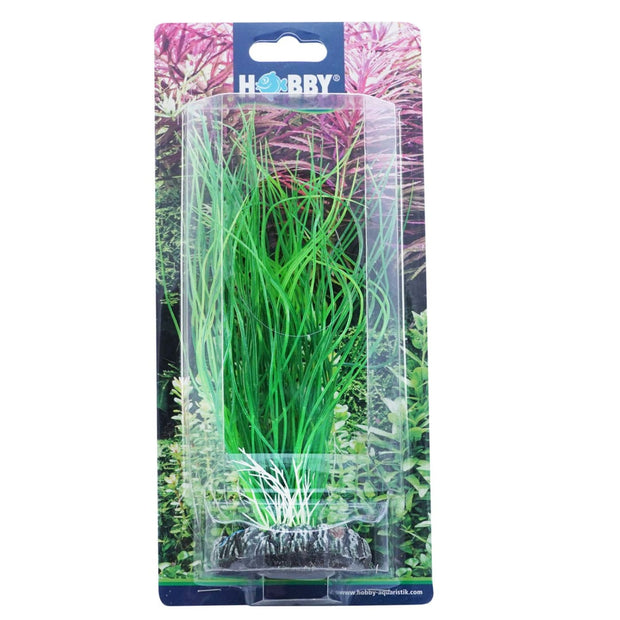 Hobby Artificial Plant - Sagittaria - Aquarium Decor &