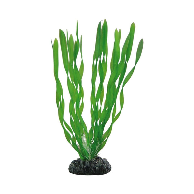Hobby Artificial Plant - Vallisneria - 20cm - Aquarium Decor