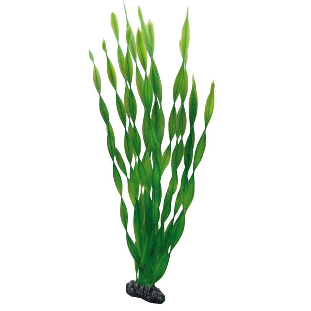 Hobby Artificial Plant - Vallisneria - 46cm - Aquarium Decor
