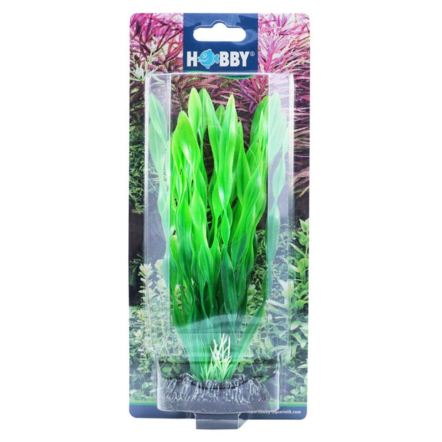 Hobby Artificial Plant - Vallisneria - Aquarium Decor &