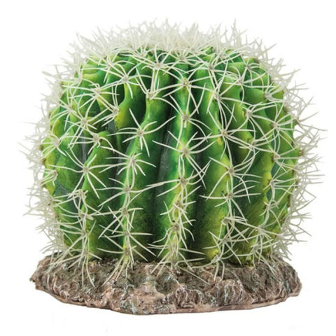 Hobby Cactus Sierra Nevada - Decor & Lighting