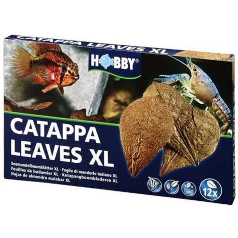 Hobby Catappa Leaves XL (12 pcs) - Aquatic Accessories