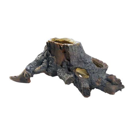 Hobby Stump Cavity - Medium - Decor & Lighting