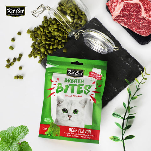 KitCat Breath Bites - Beef - Cat Treats