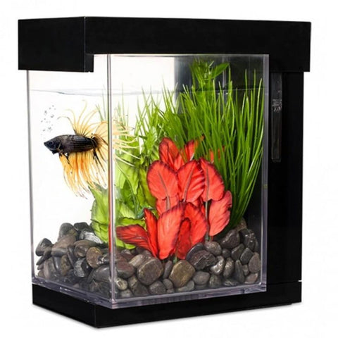 Marina Betta EZ Care Style Aquarium (3.7L) - Aquarium Tanks
