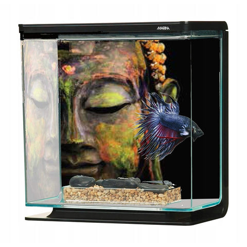 Marina Betta Kit - Buddha (3L) - Aquarium Tanks & Cabinets