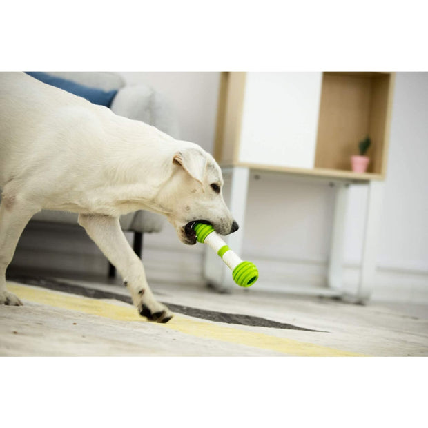 PetGeek Interactive Play Bone - Dog Toys