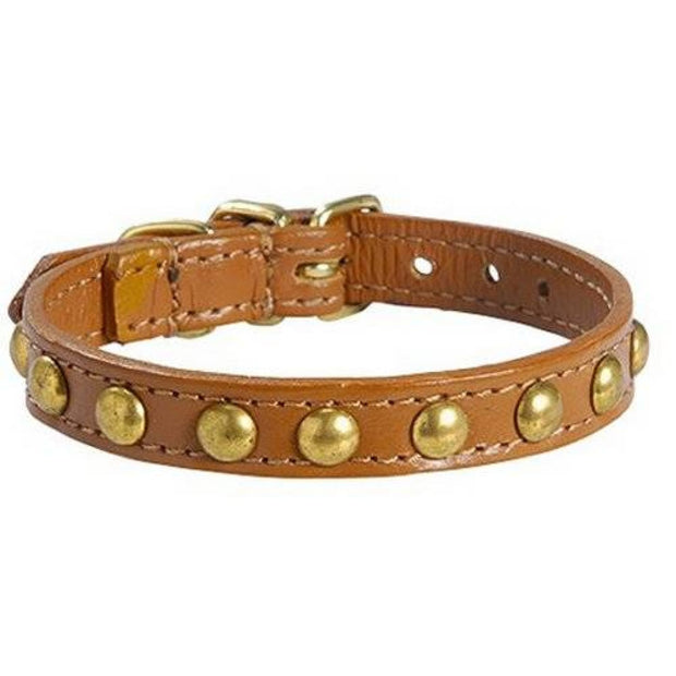 Petite Studded Cat Collar - Camel - Cat Collars & Tags