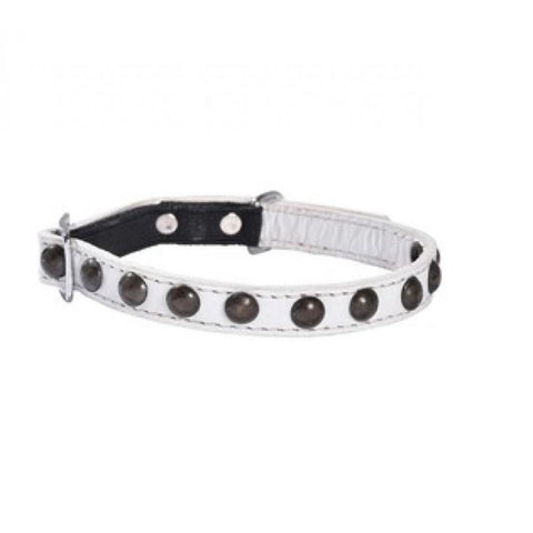 Petite Studded Cat Collar - White - Cat Collars & Tags