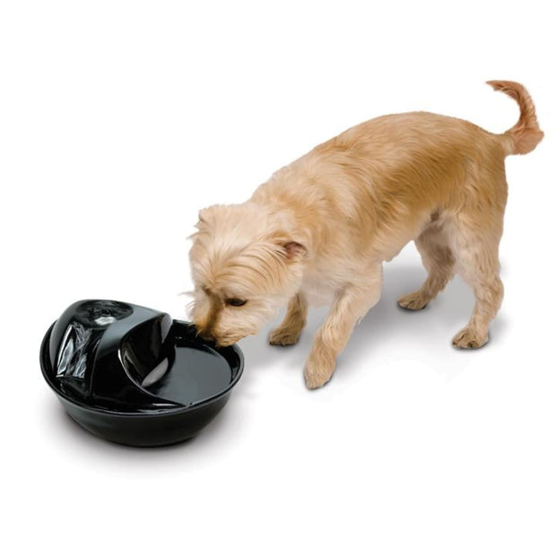 Raindrop Durable Ceramic Drinking Fountain (60 oz / 1.8 L) -