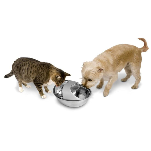 Raindrop Premium Stainless Steel Drinking Fountain -