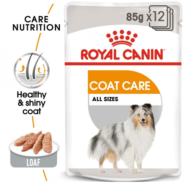 Royal Canin Coat Beauty Wet Food 12x85g (pouches)