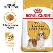 Royal Canin BHN Cavalier King Charles Adult 1.5kg - Dog Food