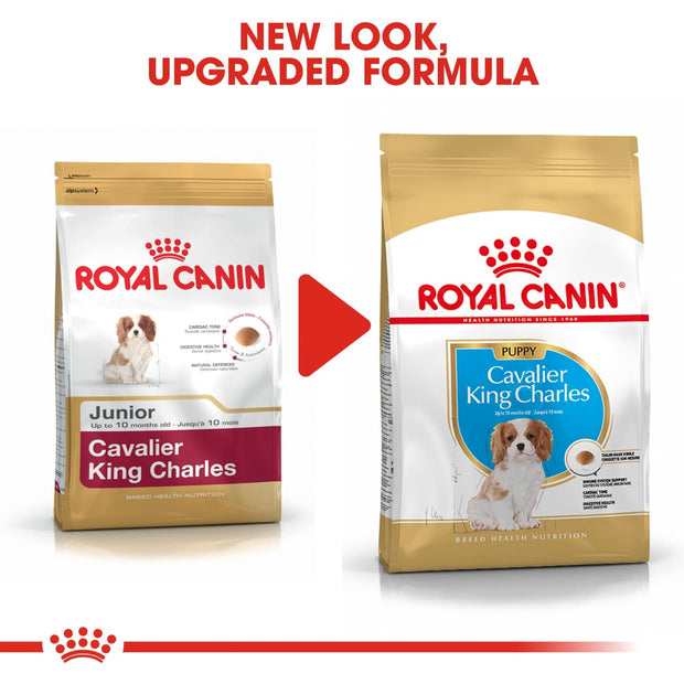 Royal Canin BHN Cavalier King Charles Puppy 1.5kg - Dog Food
