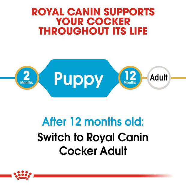 Royal Canin BHN Cocker Spaniel Puppy 3kg - Dog Food