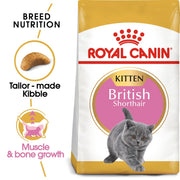 Royal Canin Feline Breed - British Shorthair Kitten 2kg -