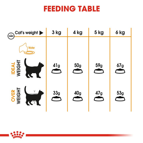 Royal Canin Feline Care - Hair & Skin - Cat Food