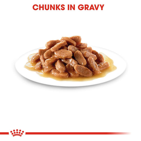 Royal Canin Kitten Instinctive in Gravy (12x85g Pouches) -