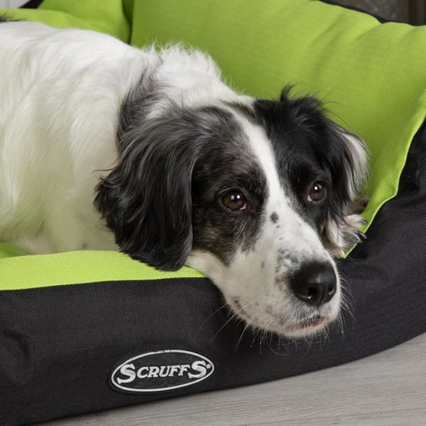 Scruffs Expedition Dog Bed - Lime - Dog Beds