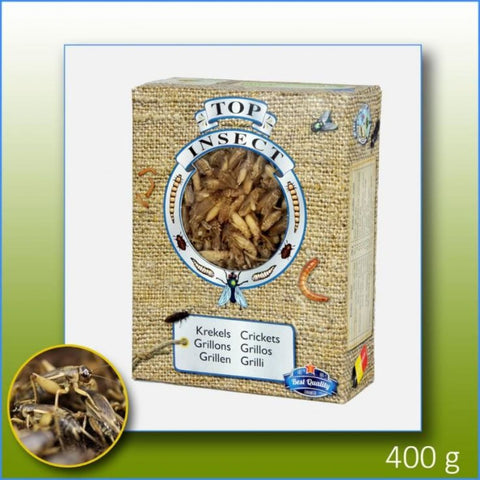 Topinsect Frozen Crickets 1L (400g) - Food & Health