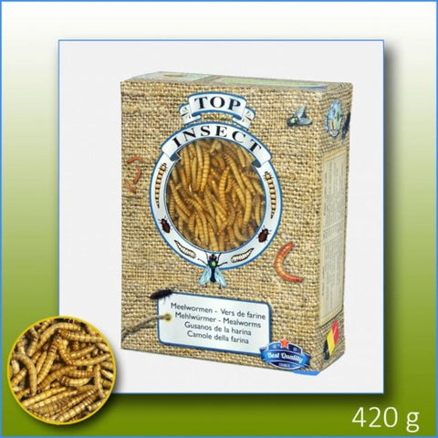 Topinsect Frozen Mealworms 1L (420g) - Food & Health