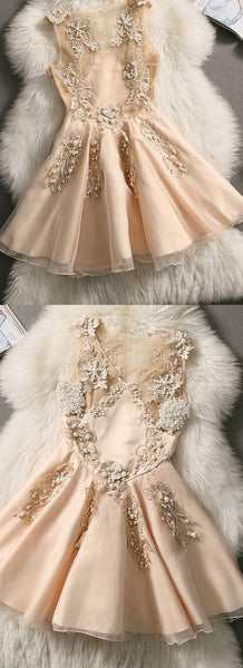 Cute A Line Champagne Appliques Homecoming Dress S19149