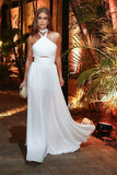 White Chiffon Prom Dress, Simple Long Party Dress, Halter Evening Dress  S6610