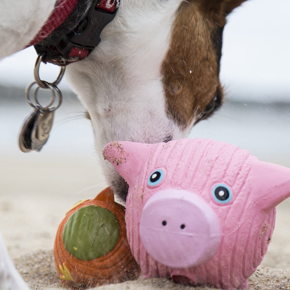Ruff-Tex® Hamlet the Pig Ball