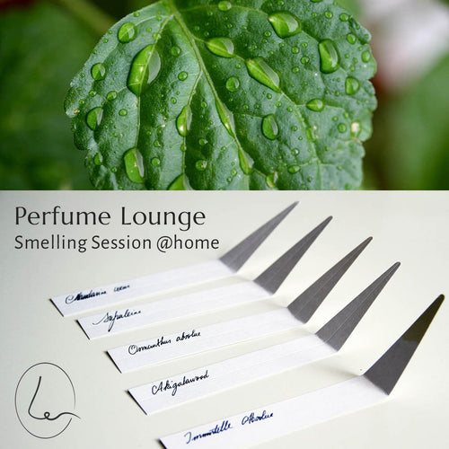 Smelling Session @home - Parfums met Patchouli