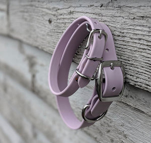 Biothane collar and leash: Lavender