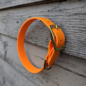 Biothane collar and leash: Light Orange