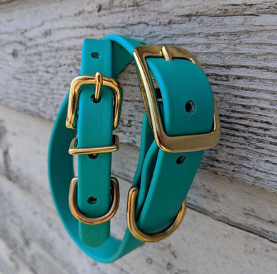 Biothane collar & leash: Teal