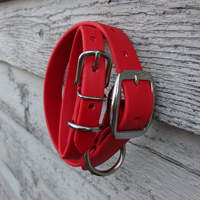 Biothane collar & leash: Red