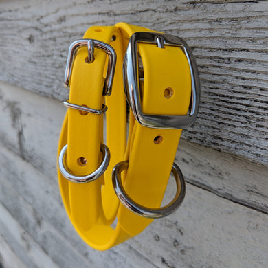Biothane collar & leash: Yellow